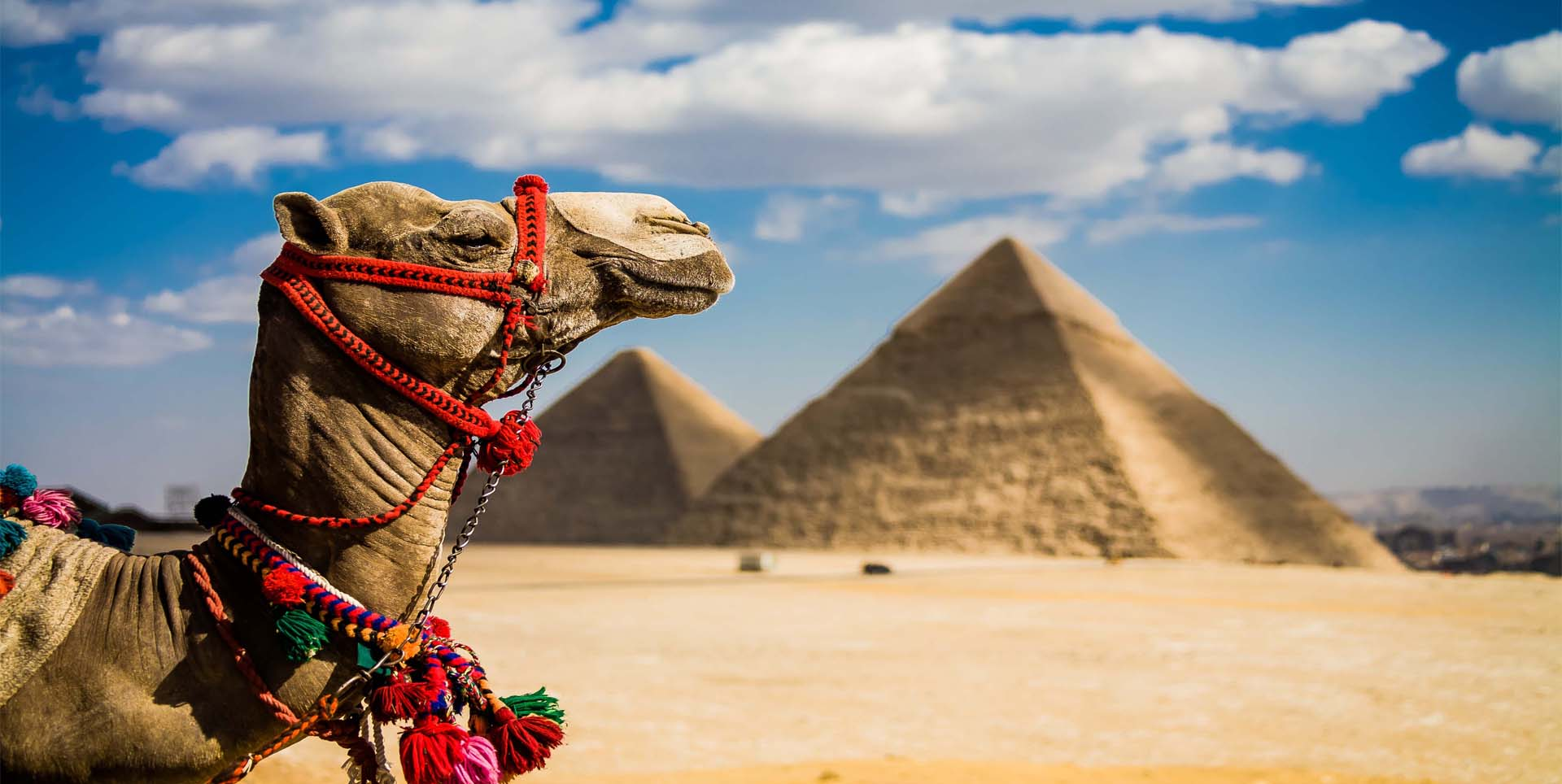 Pyramids & Cairo Tour from Luxor by Flight